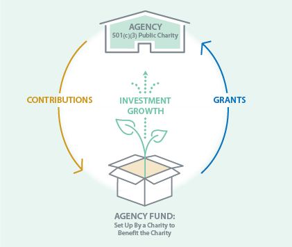 How an Agency Fund Works