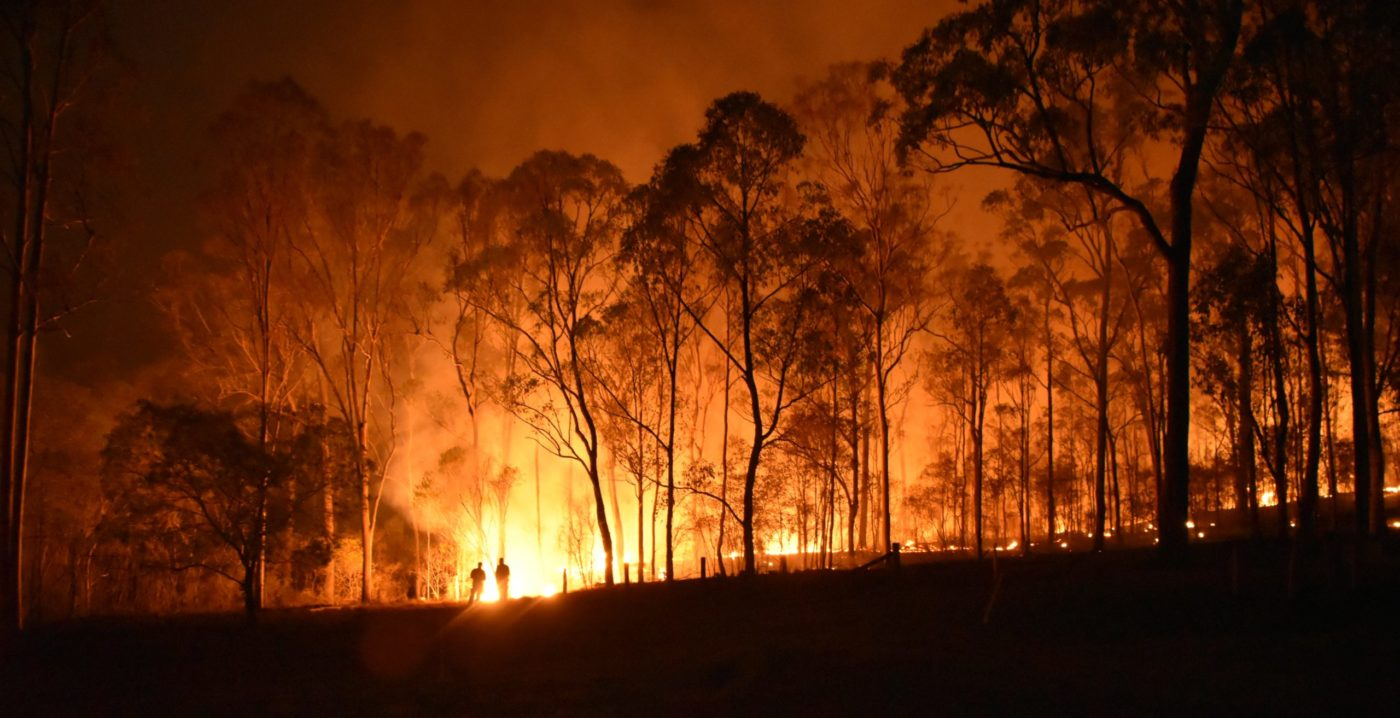 Supporting Australian Wildfire Relief